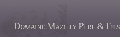 Logo Domaine Mazilly